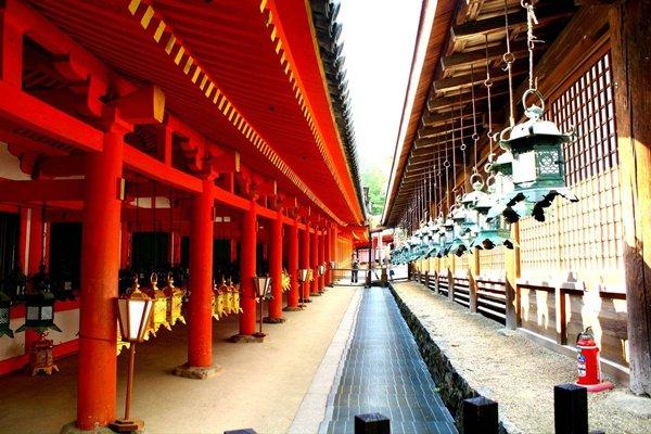 【温泉特惠】日本6日5晚跟团游双飞·奈良+富士山+东京+大阪.穿日式和服泡美汤