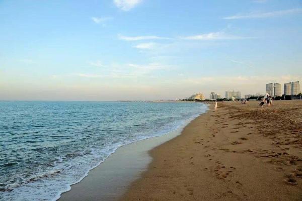 【品质度假】青岛日照海洋探秘、沙滩微度假纯玩三日游