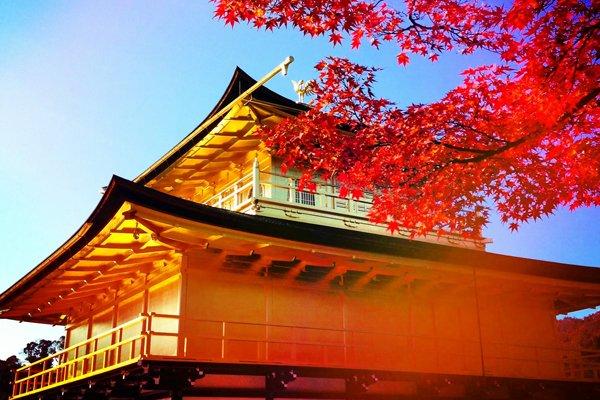 【乐享·日本】日本本州双古都、温泉、美食、购物首选轻奢6日之旅(南通口岸)