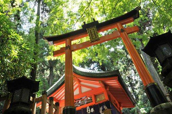 【主持人带队】日本6日5晚跟团游双飞·东京+大阪+富士山+一晚温泉酒店