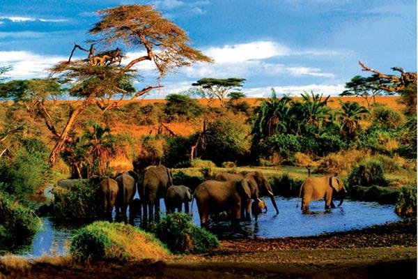 肯尼亚四大公园+二大湖泊7晚10日