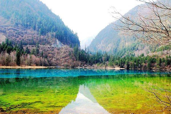 九寨•黄龙•熊猫乐园•雍仲神山