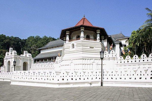 【尊享斯里兰卡】斯里兰卡7日5晚跟团游直飞·船游红树林+米内日亚国家森林公园