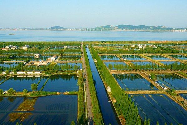 【慢享生活】南京固城湖水慢城湿地公园 游子山景区一