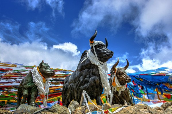 【寻梦西藏】西藏12日跟团游双卧·布达拉宫 八角街 米拉山口 尼洋阁