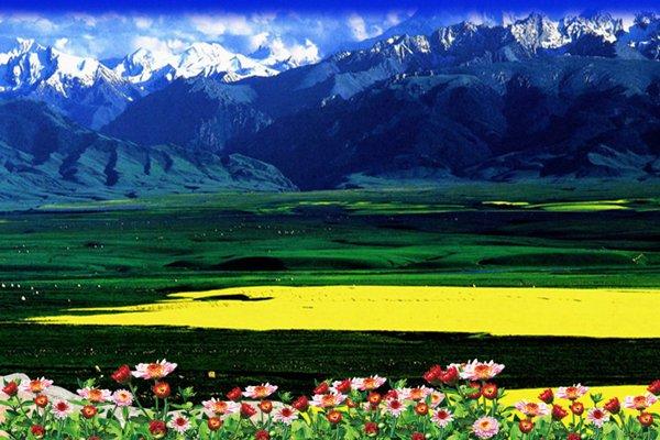 【金山银水】新疆8日7晚跟团游·禾木+五彩滩+魔鬼城+天山天池.感受古老的西域文明