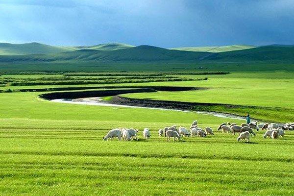 【美食内蒙】呼和浩特4日3晚跟团游双飞·希拉穆仁草原+银肯塔拉沙漠+蒙亮民族风情园