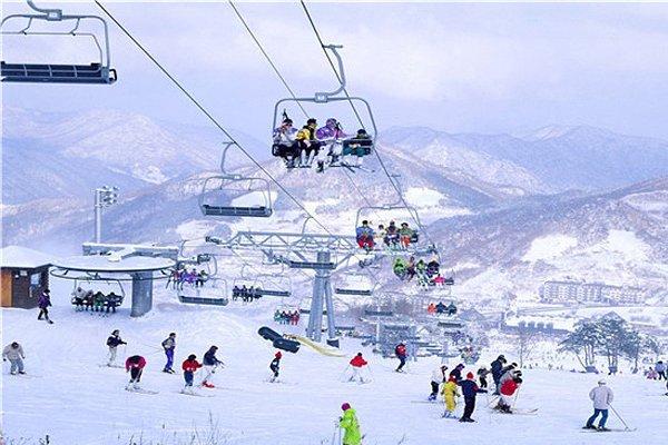 【纯真*东北年味】哈尔滨冰雪大世界、伏尔加庄园、亚布力、中国雪乡、威虎寨、松花江冬捕双飞5日游