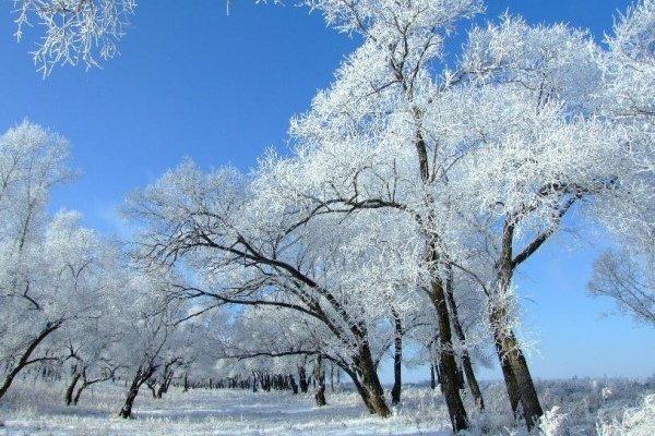 全景嬉戏东北-吉林雾凇长廊、长白山、寒地温泉、威虎寨、雪乡、亚布力滑雪、哈尔滨、冬捕双飞纯玩6日游