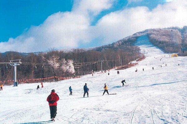 【冰雪之冠】哈尔滨6日5晚跟团游双飞·激情亚布力滑雪+森林猎户之家+梦里童话雪乡