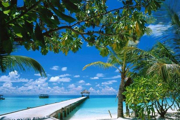 蜈支洲岛,南山佛教文化苑,南天热带植物园,槟榔谷,三亚国际免税城双飞