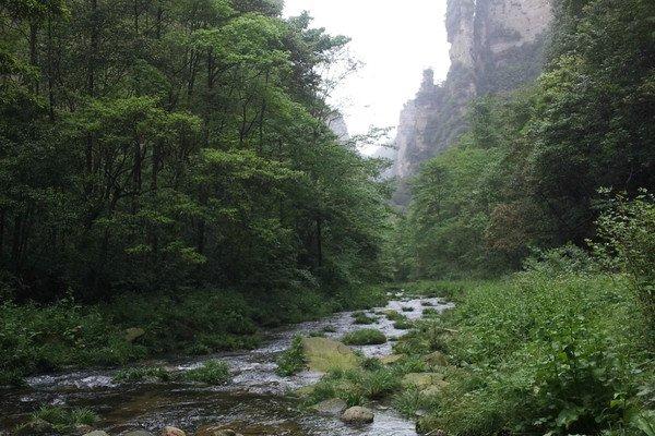 【深度纯玩】湘西5日4晚跟团游·荆州+张家界国家森林公园+金鞭溪+杨家界