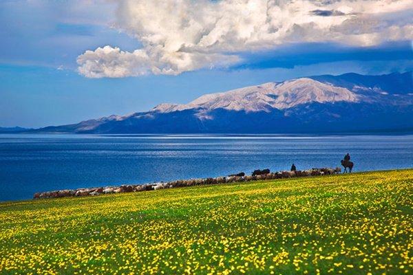 【花海伊梨】 赛里木湖、杏花园、天池、吐鲁番、库木塔格沙漠、南山丝绸之路度假区双飞8日游