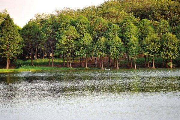 【亲子时刻】苏州林屋洞+虎丘湿地一日游